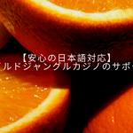 【安心の日本語対応】ワイルドジャングルカジノのサポート