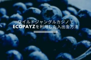 ワイルドジャングルカジノでecoPayzを利用した入出金方法